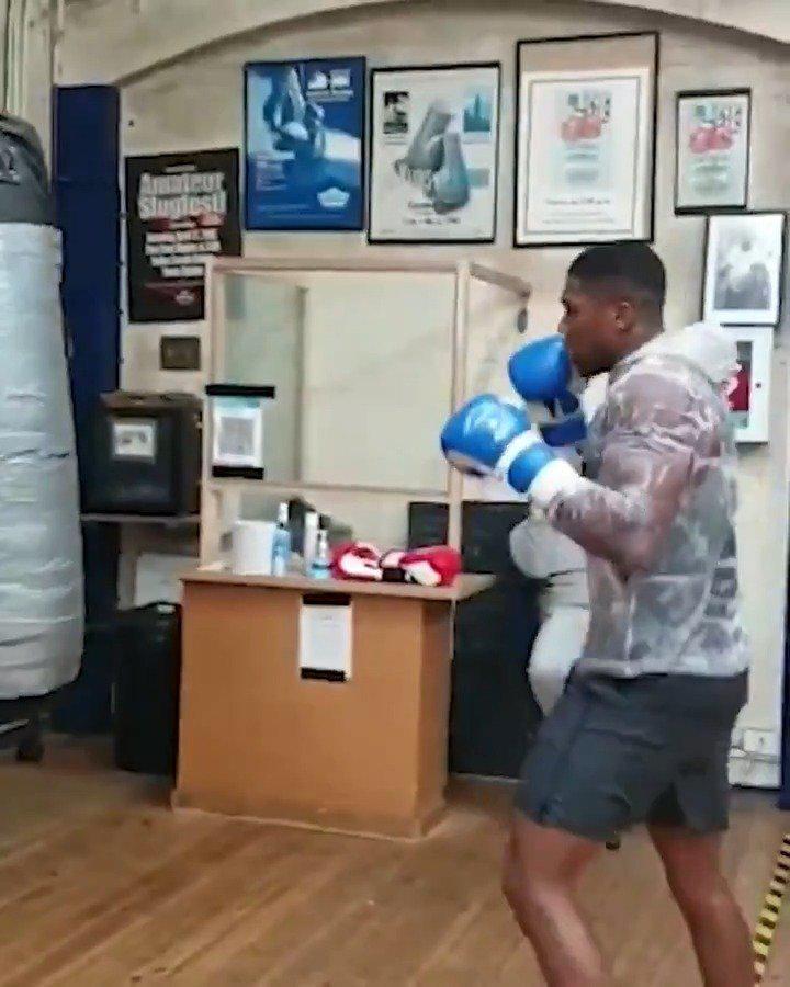 IBF、IBO、WBA、WBO重量级拳王安东尼·约书亚刻苦训练……