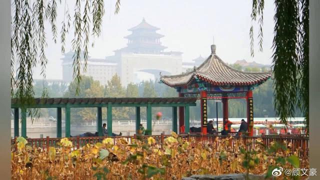 时节,北京莲花池公园有多美!