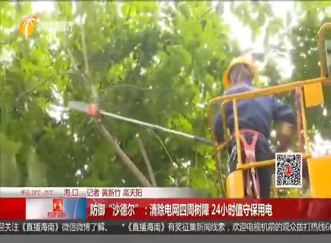 """防御""""沙德尔"""":清除电网四周树障 24小时值守保用电"""