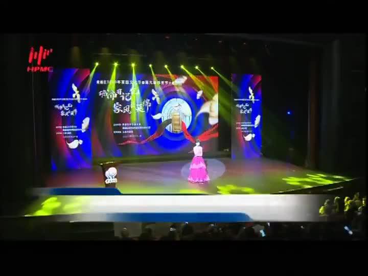 2020年黄浦区家庭文化节暨第九届邻里节主题活动举行