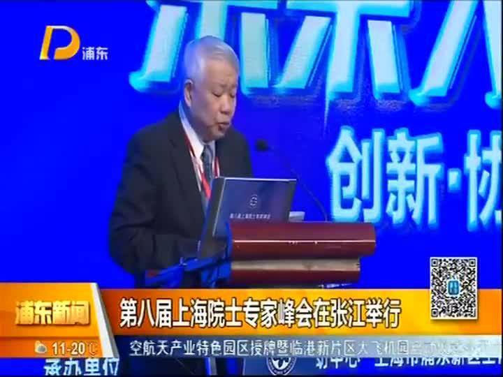 第八届上海院士专家峰会在张江举行