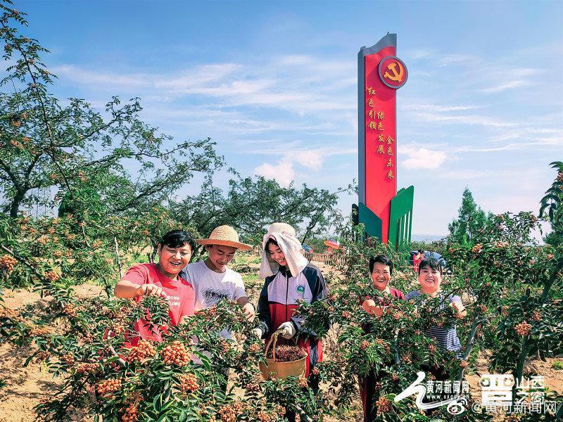 山西产业扶贫产品展播:乡宁花椒