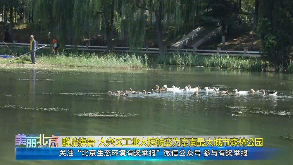 大兴区工业大院转变为京南最大城市森林公园