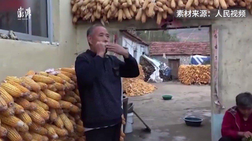 临沂63岁大爷用玉米摆出青岛加油:大爷还是硬核乐器手……