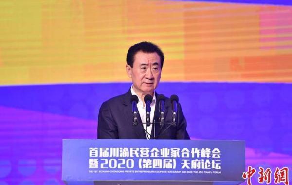 王健林:中小民企少谈高大上管理理念,抓现金、活得久是王道