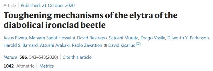 「物理防御」max!汽车压不扁的 2 厘米小甲虫登上 Nature,硬核仿生学灵感来了