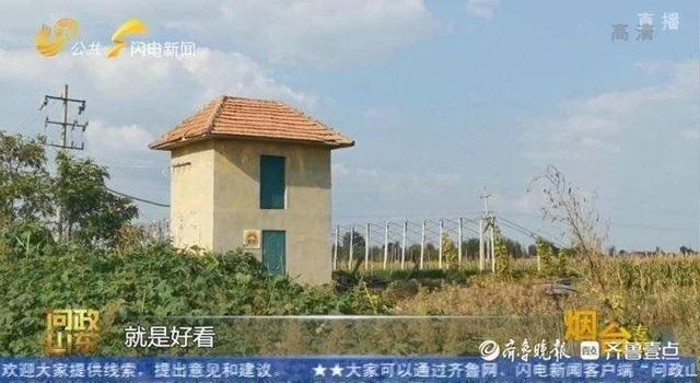 问政山东|控制器里长杂草!莱阳一些村庄小农水设施建好了不能用