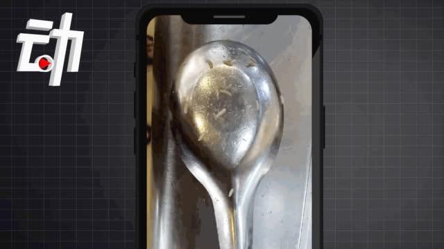 河南安阳师范学院回应食堂餐具出现蛆虫:情况属实