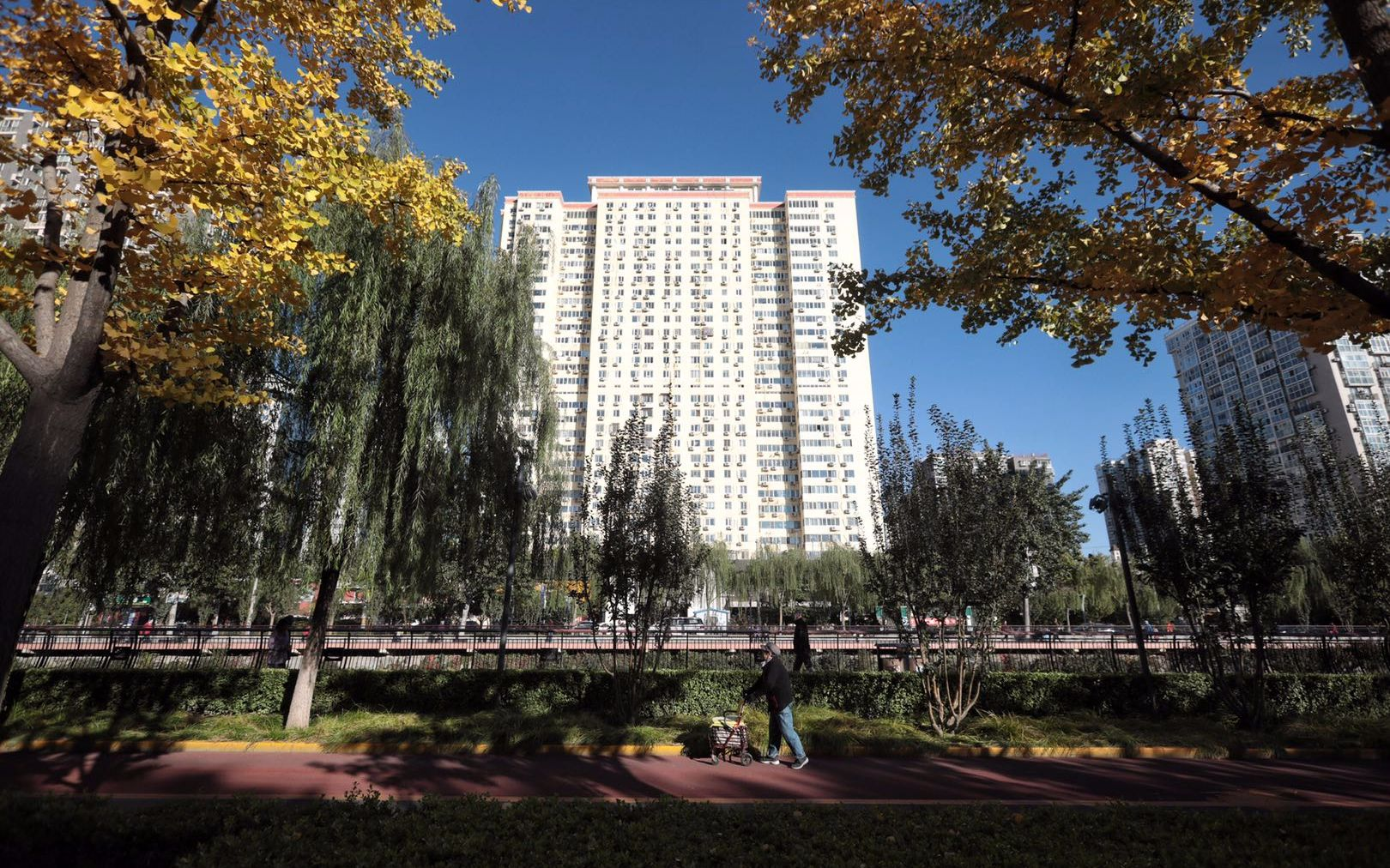 西城实施三年林荫行动计划 将建99条慢行林荫示范路图片