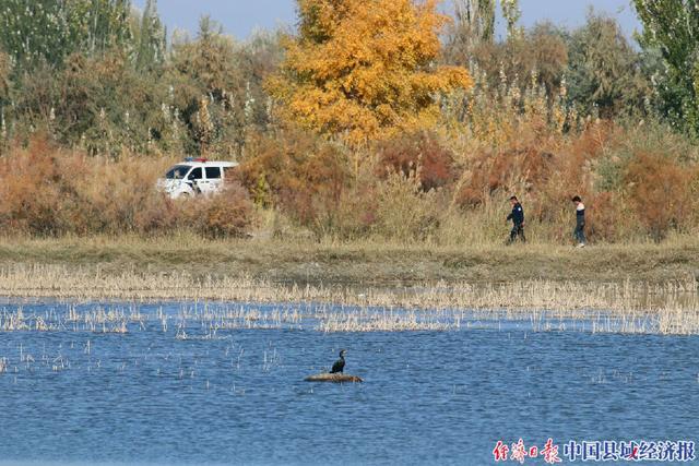 新疆阿瓦提公安:维护生态安宁,守护绿