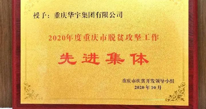 """华宇集团荣获""""2020年度重庆市脱贫攻坚工作先进集体""""称号"""