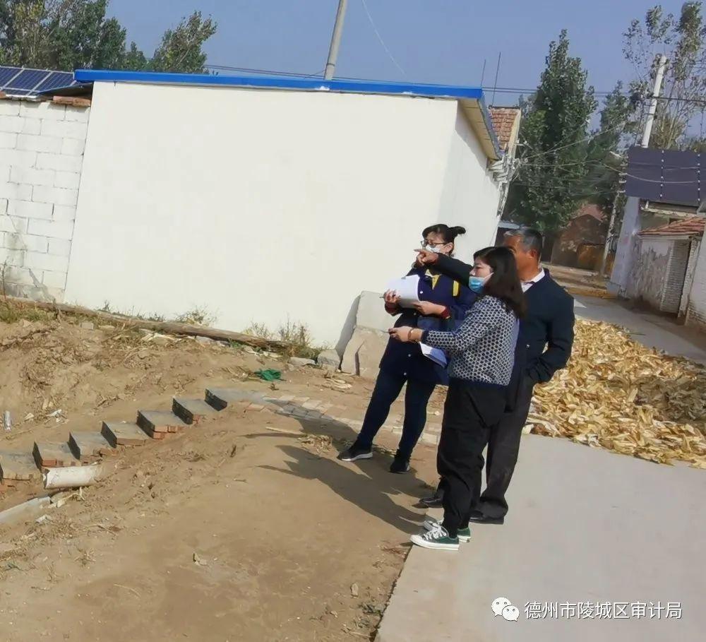 【审计动态】陵城区审计局积极关注关注农村人居环境整治情况