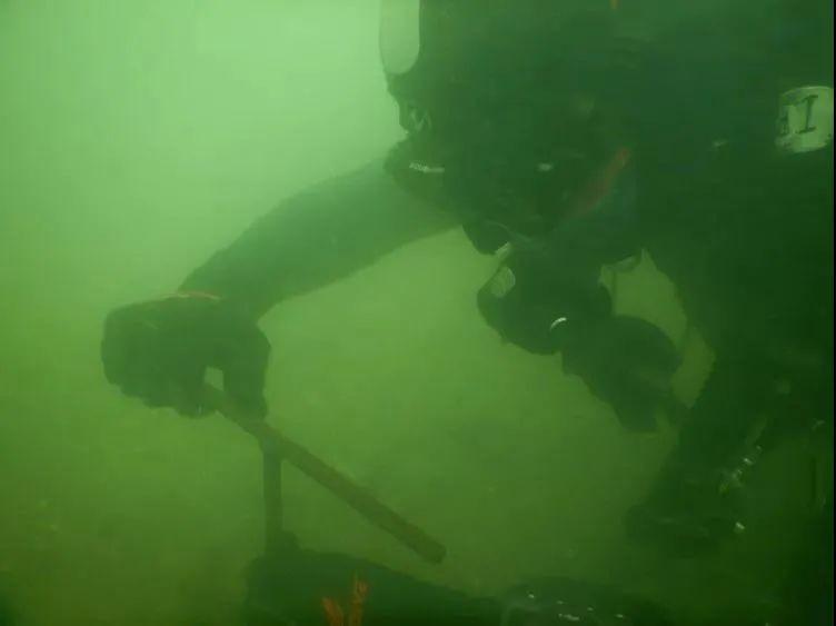 水下观察。(图片泉源:半岛都会报)