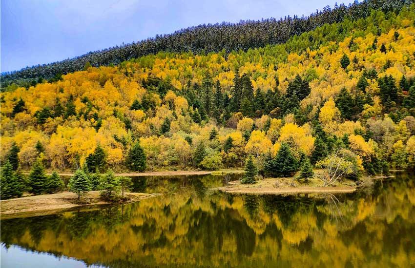 这些图告诉你,香格里拉普达措的秋天有多美