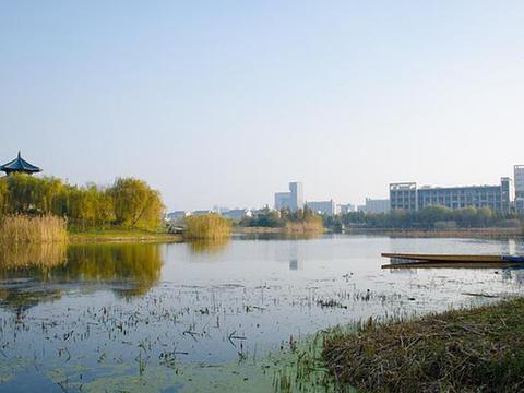 福建师范大学、中南民族大学、中国矿业大学、西安交大等研究周易