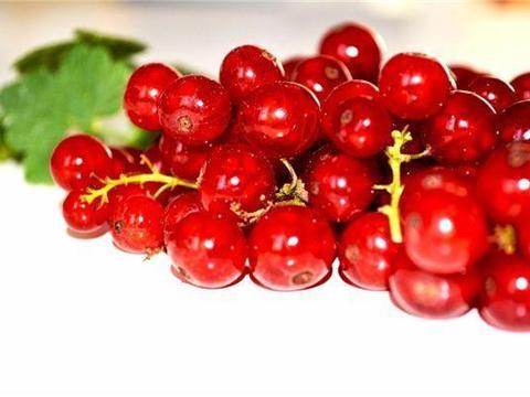 好食物吃出好身体,以下食物要常吃,强化血管,滋养肌肤