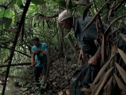 男子野外河流探险捕获奇特怪鱼,了解过后却让人心有余悸
