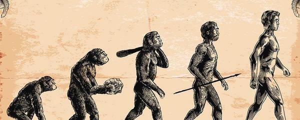 为什么说人类学会直立行走,很可能是进化中发生的最大一个错误