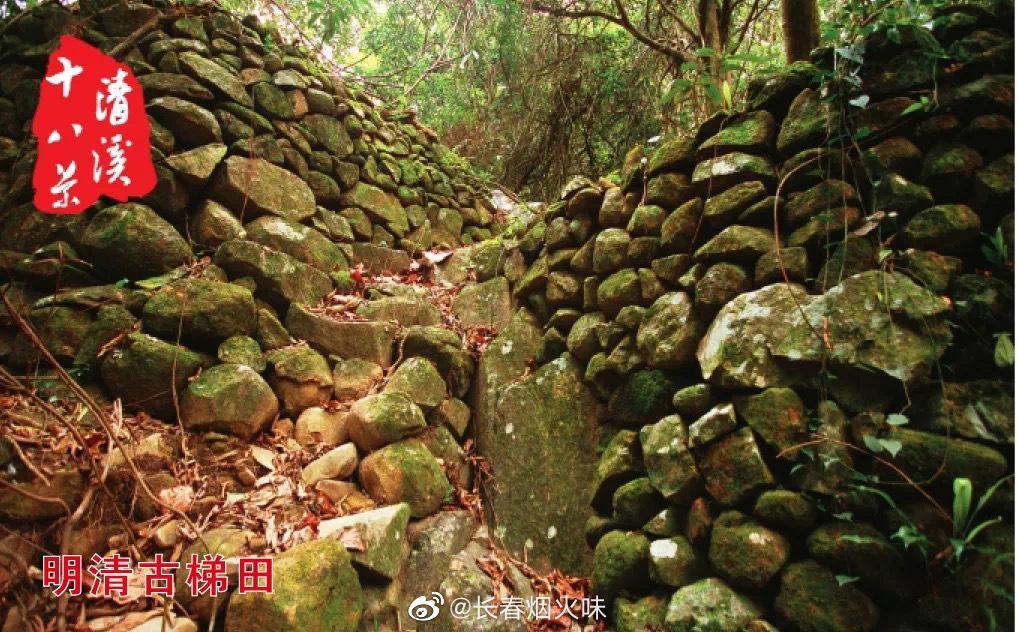 明清古梯田 在东莞市清溪银瓶山森林公园的密林中……