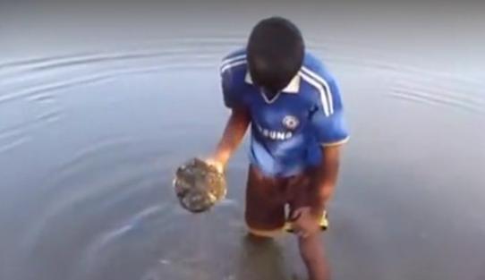 男子水中捞起一块石头,用镰刀敲碎后,里面都是宝贝
