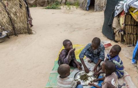 尼日尔土地不适合农作物种植,食物来源只能靠别人救济,太可怜
