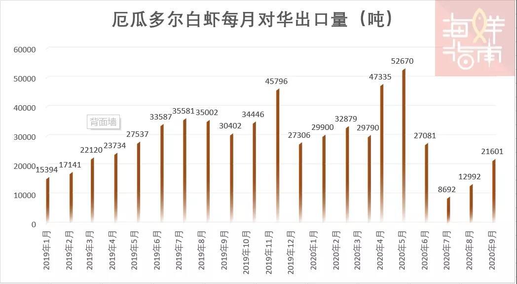 约1200条柜!9月厄瓜多尔白虾进口暴增66%!