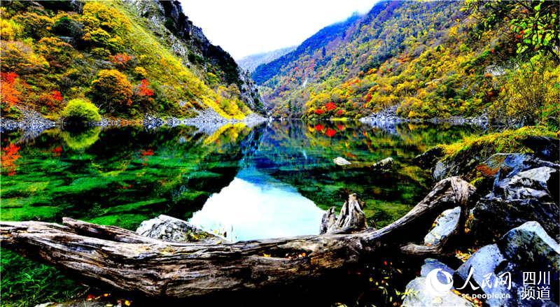 茂县叠溪·松坪沟景区迎来红叶彩林最佳观赏期