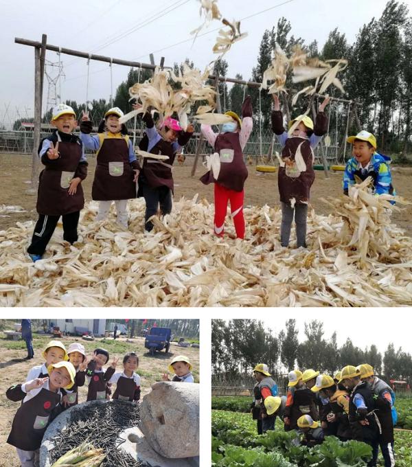 """新华幼儿园教育集团开展""""共享自然 收获喜悦""""实践活动"""