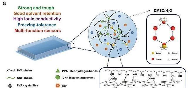 纤维素纳米纤维增强,实现高强度、耐低温离子导电有机水凝胶