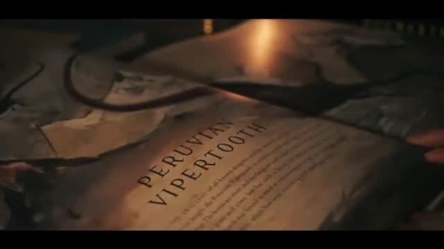 角色扮演向的哈利波特主题白噪音
