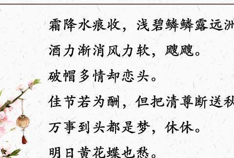 苏轼在重阳节写给好友的一首词,其中七字,胜过万千心灵鸡汤