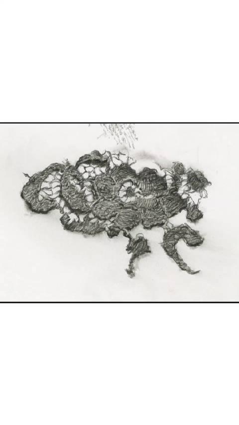 刘斌老师写实素描衣料质感塑造——黑蕾丝步骤图