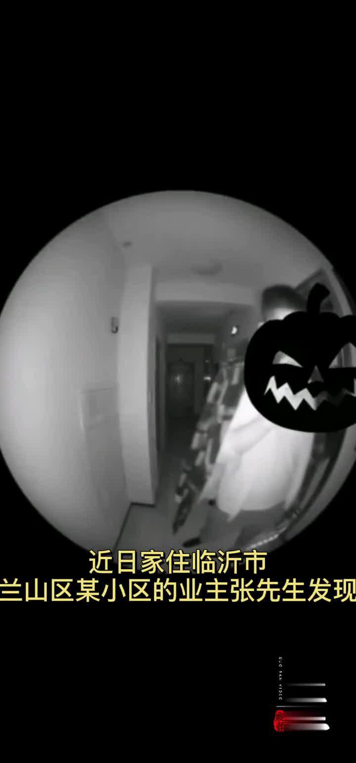 果然视频|临沂一蟊贼入室行窃,猫眼记录下作案过程!