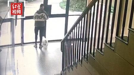 外卖小哥送餐后抱走宠物狗,监控显示其几次拍掌引诱……