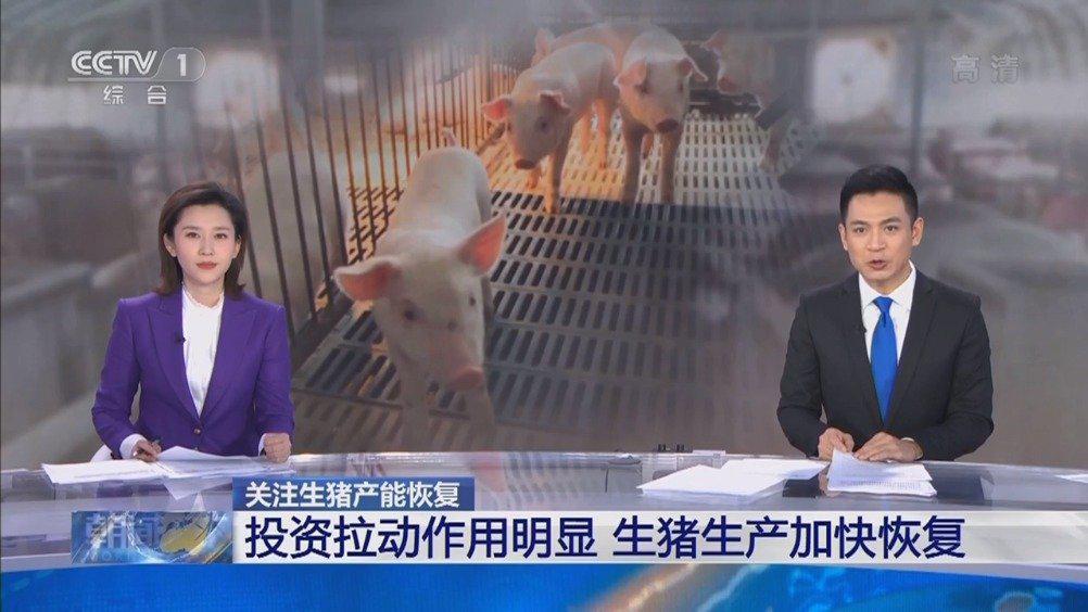 央视《朝闻天下》:济南规模猪场复养