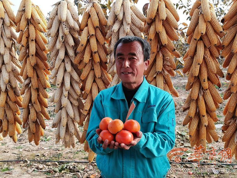 陕西脱贫攻坚网络传播活动在咸阳启动 采访团来到乾县等地采访