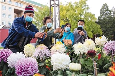 北京市属公园开展31项金秋游园活动