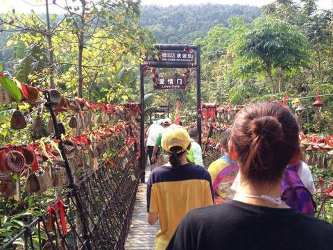 中国钻石级雨林景区,是海南岛五大热带旅游区精品浓缩,景观独特