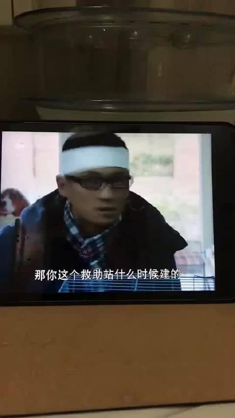 顾晶导演电视连续剧《老严有女不愁嫁》……