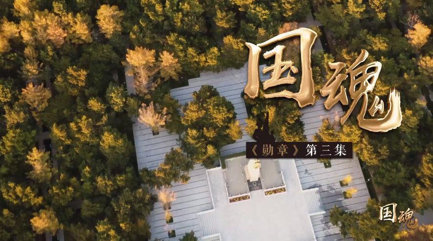 抗美援朝的河南记忆 微纪录片《勋章》——国魂