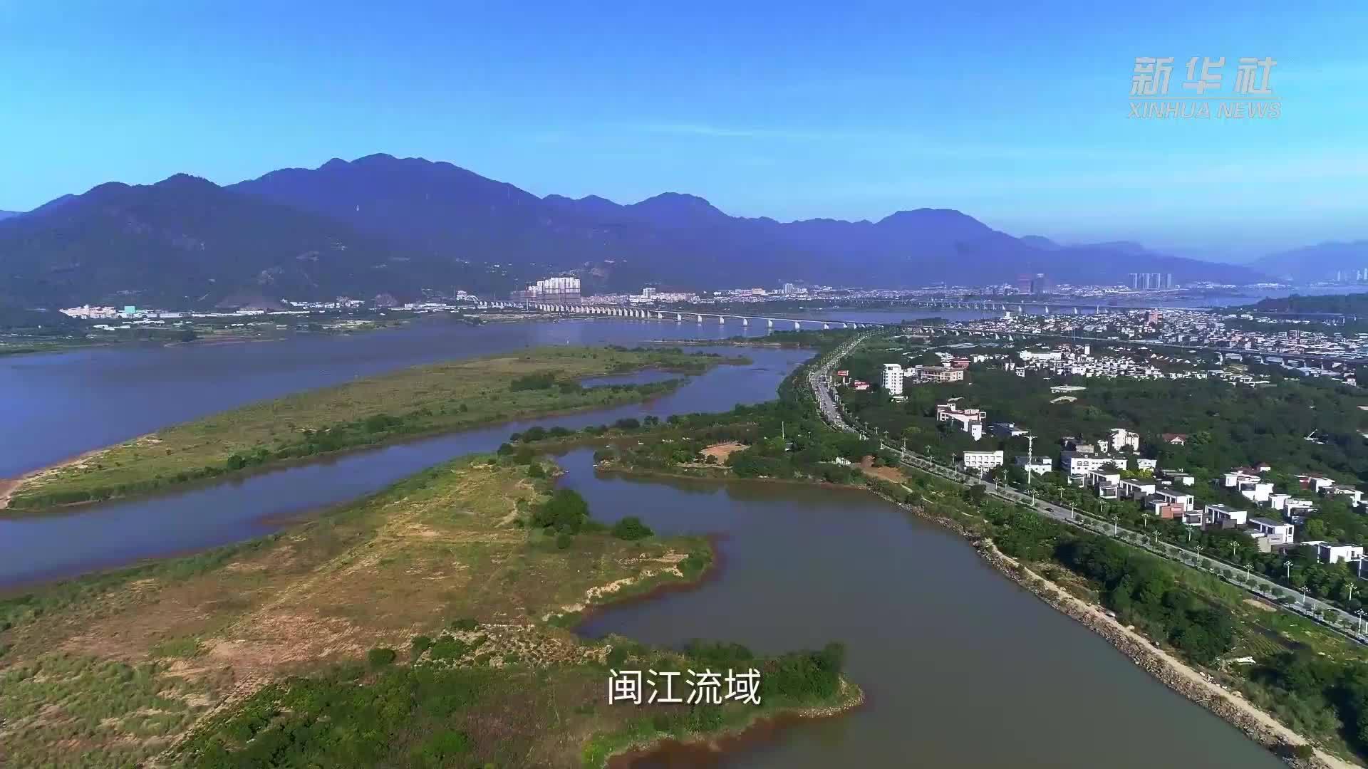 """福建""""母亲河""""生态保护显成效(新华社)"""