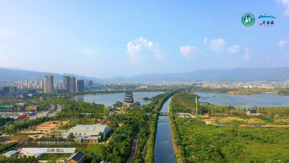 """云南省鸟类种数最多的湿地公园!青华海成鸟类的""""天堂"""""""