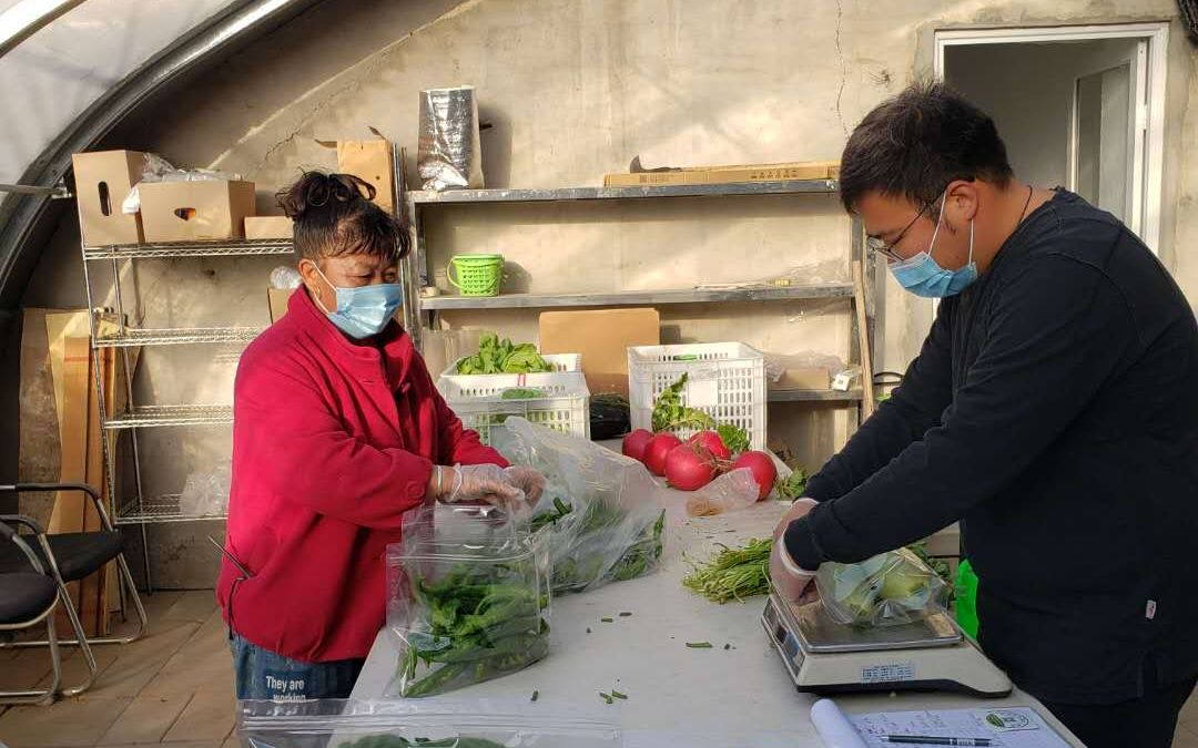 台湾青年在北京郊区做农夫:未来20年都在大陆发展了图片