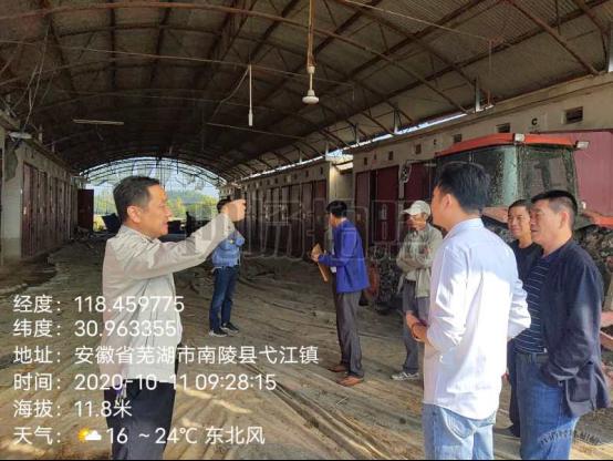 南陵县弋江镇强力推进扬子鳄国家级保护区问题整改