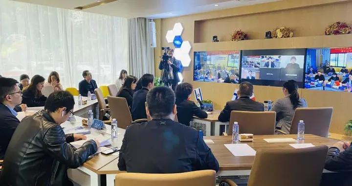 """2020南京国家海外人才离岸创新创业基地""""智汇江宁""""国际人才跨境路演赛在宁启动"""