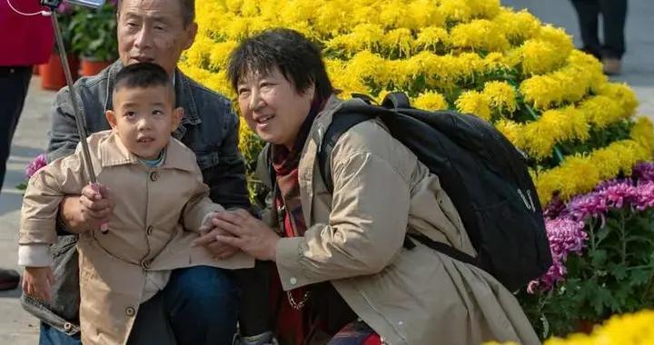 北京天坛公园菊花展吸引市民