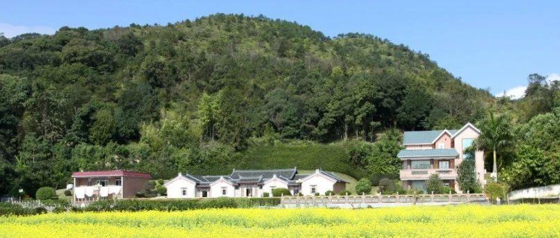 @村民们:允许根据实际需求确定用地规模!广东出台设施农用地新规