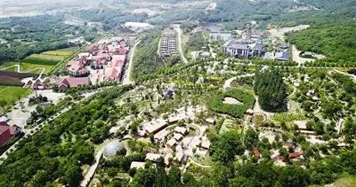 2025年青岛将建成30个以上超10亿元产业强镇 建成7条百亿级种养规模化产业链