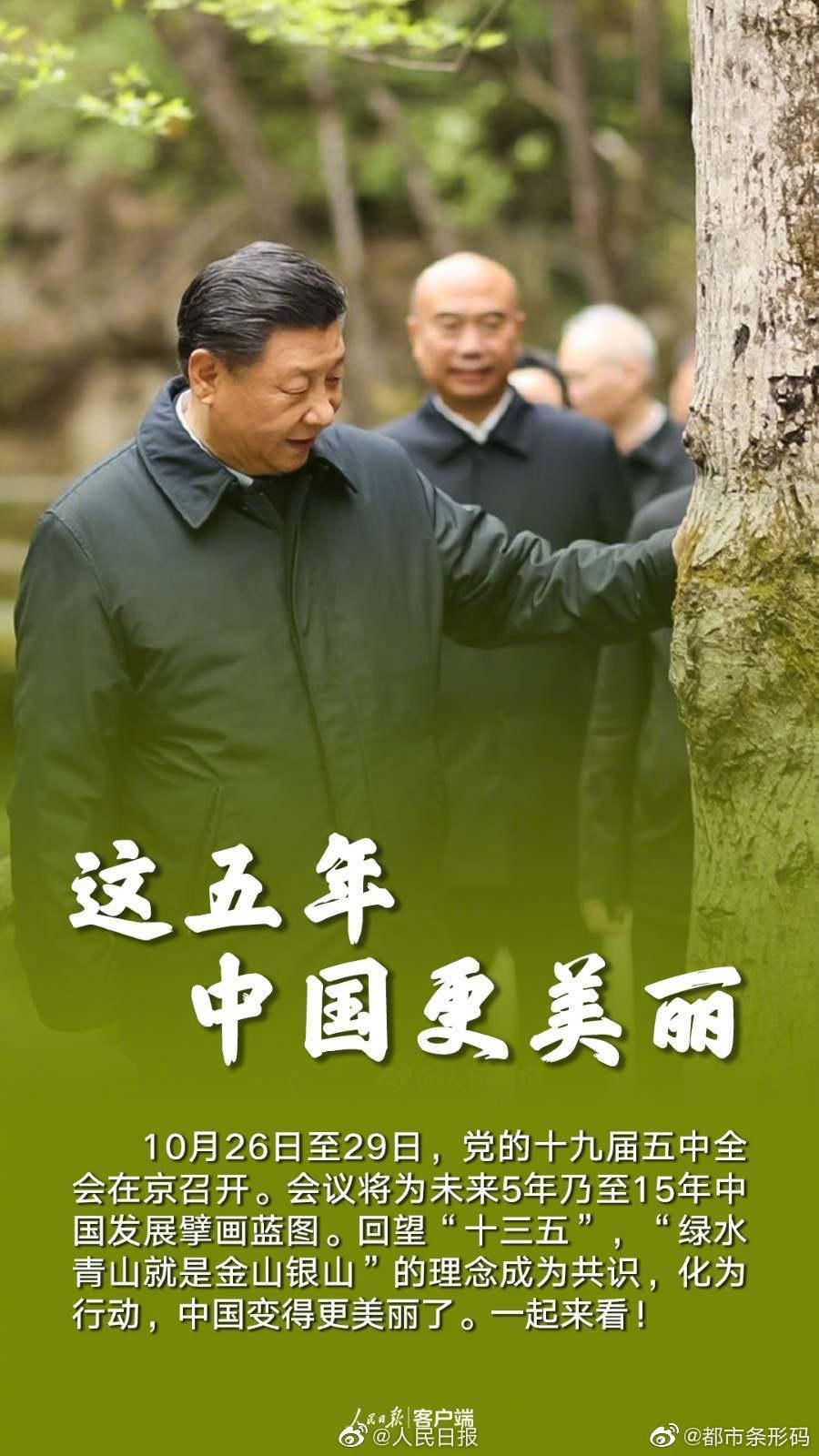 这五年中国更美丽