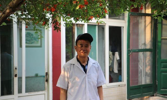 济南章丘76岁的老人,说起庭院里那棵石榴树,满满的都是亲情友情